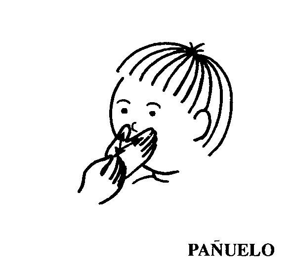 panuelo