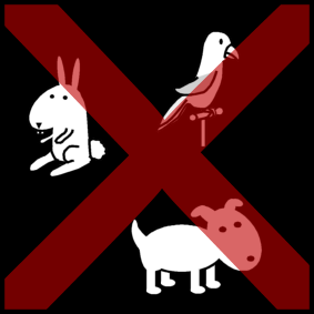 animals_5a